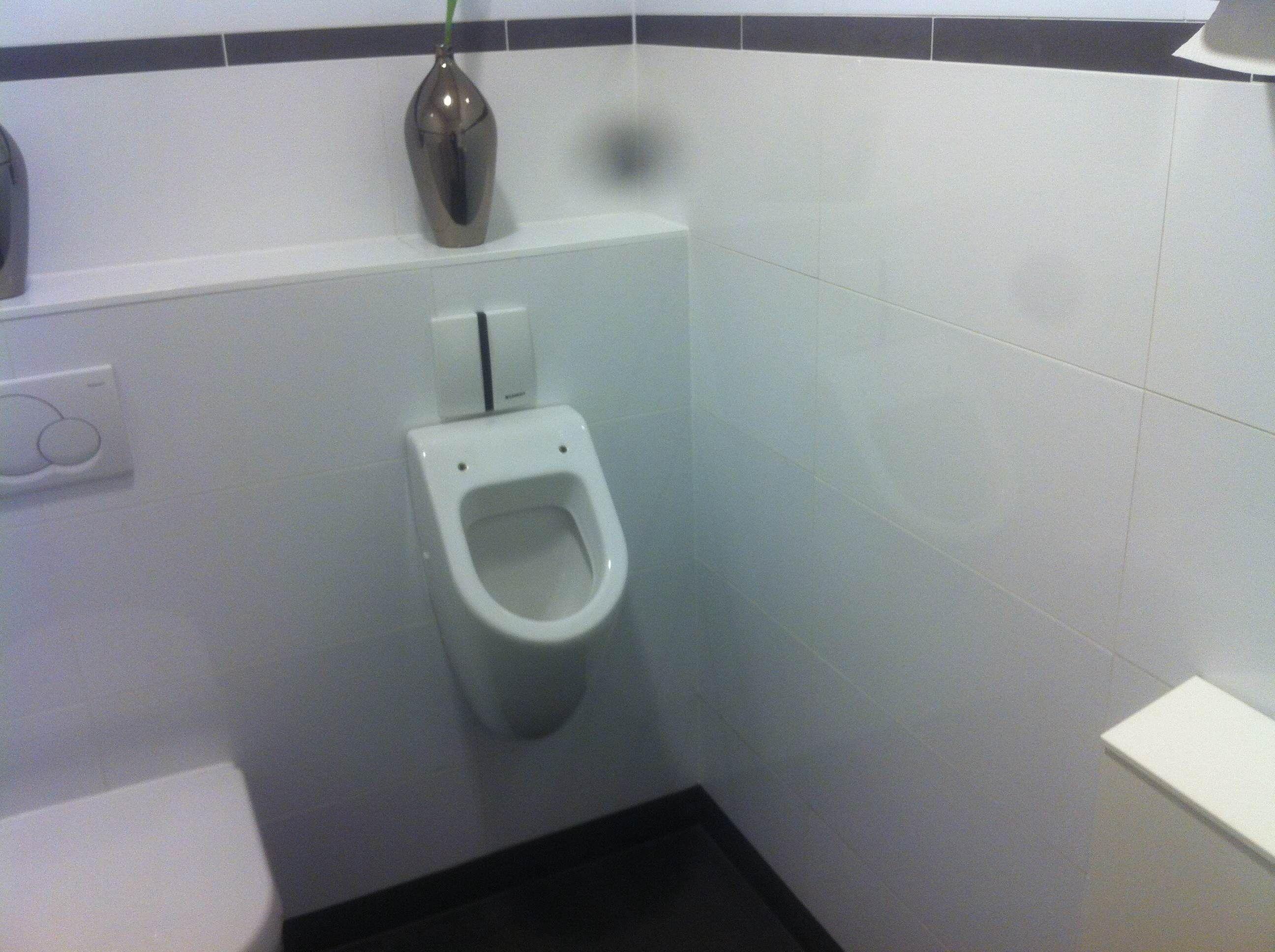 Wandtegel glans wit 30x60 gerectificeerd met witte voeg badkamer en toilet pinterest - Welke kleur in het toilet ...