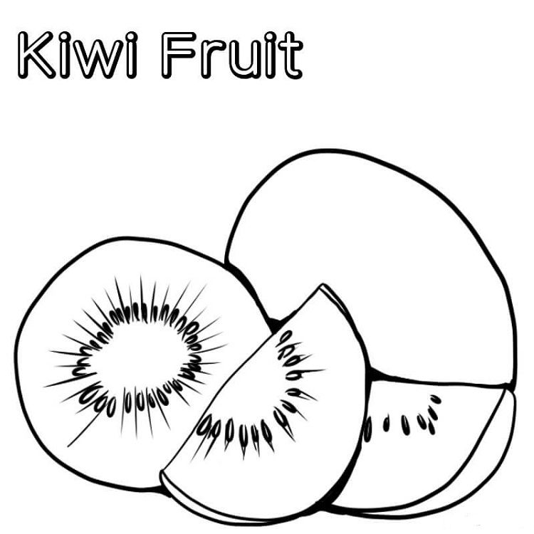 Vitamin C In Kiwi Fruit Coloring Pages Fruit Coloring Pages