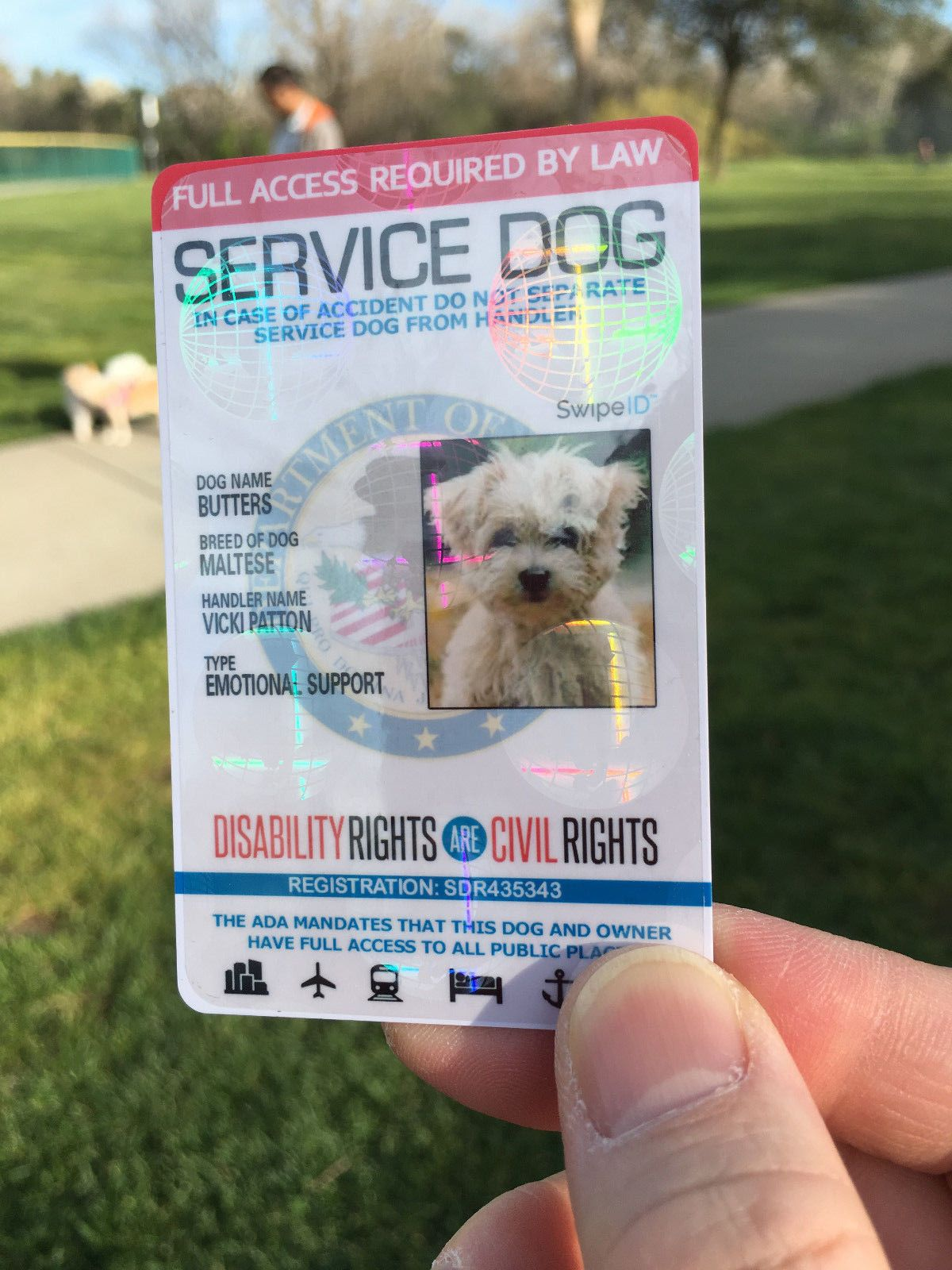 Holographic service dog id card for service animal ada with info animal xflitez Images