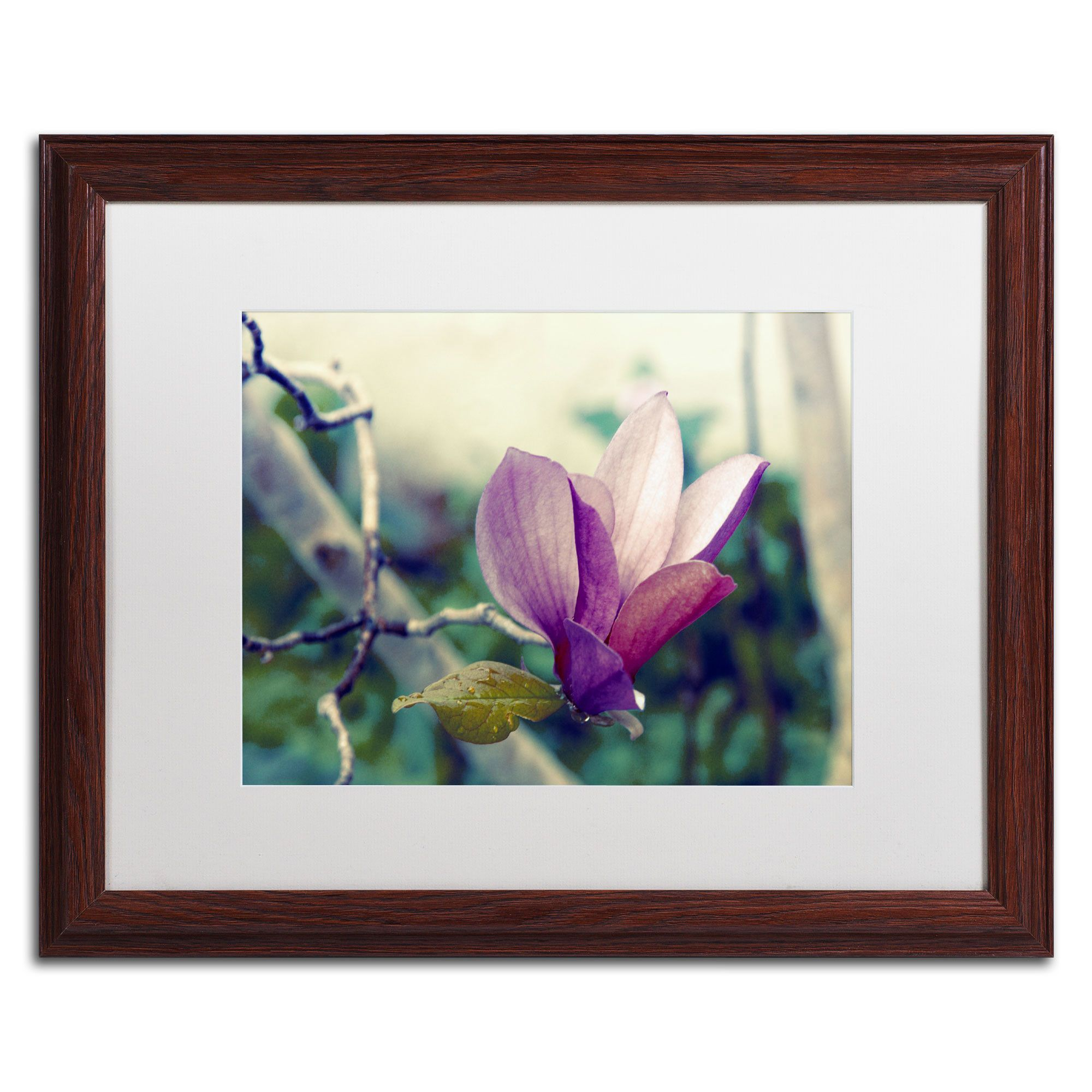 'Pink Magnolia' by Patty Tuggle Framed Photographic Print