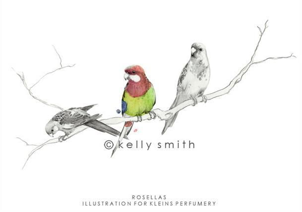 ARTIST OF THE DAY: Kelly Smith