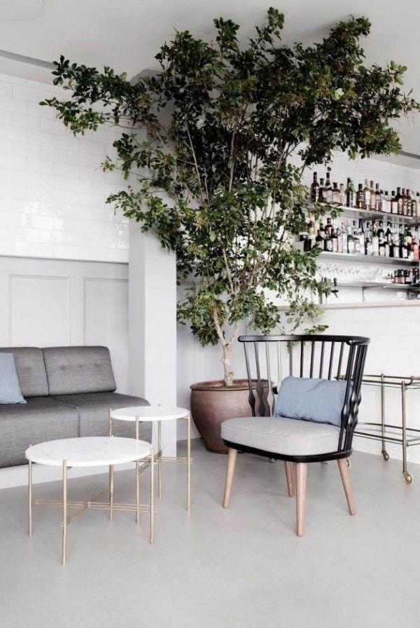 Boom in de woonkamer - THESTYLEBOX | Deco SHA Waxed concrete floor ...