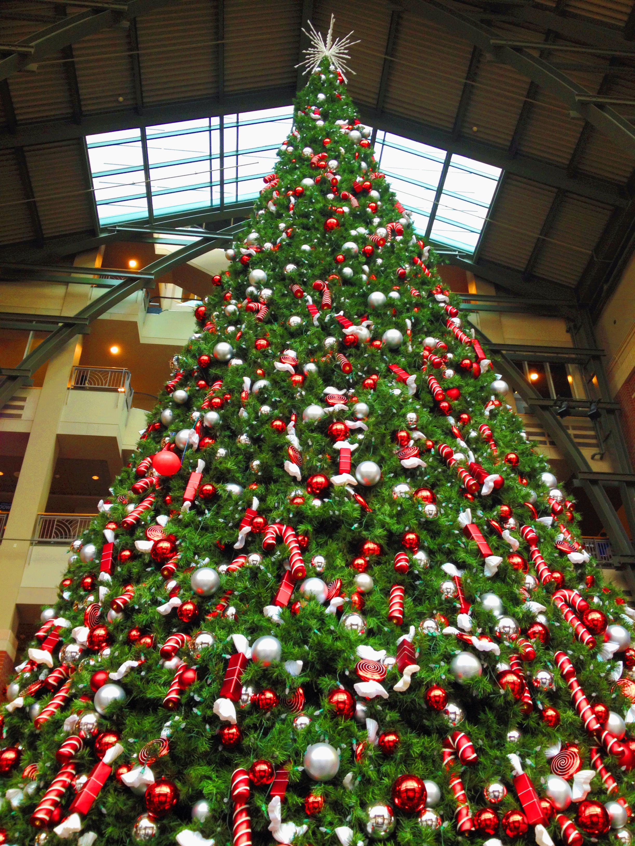 See the Christmas tree at @River Park Square , a favorite sight in ...