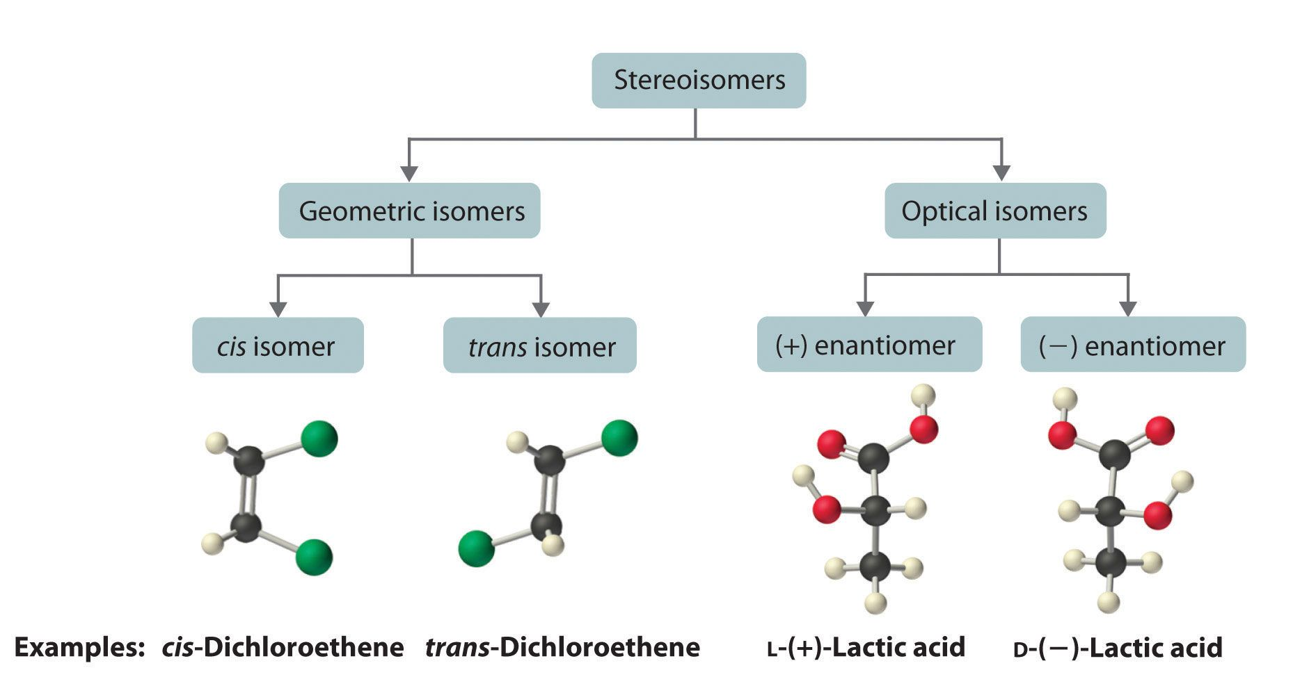 Classification Of Stereoisomers Isomers Of Organic Compounds