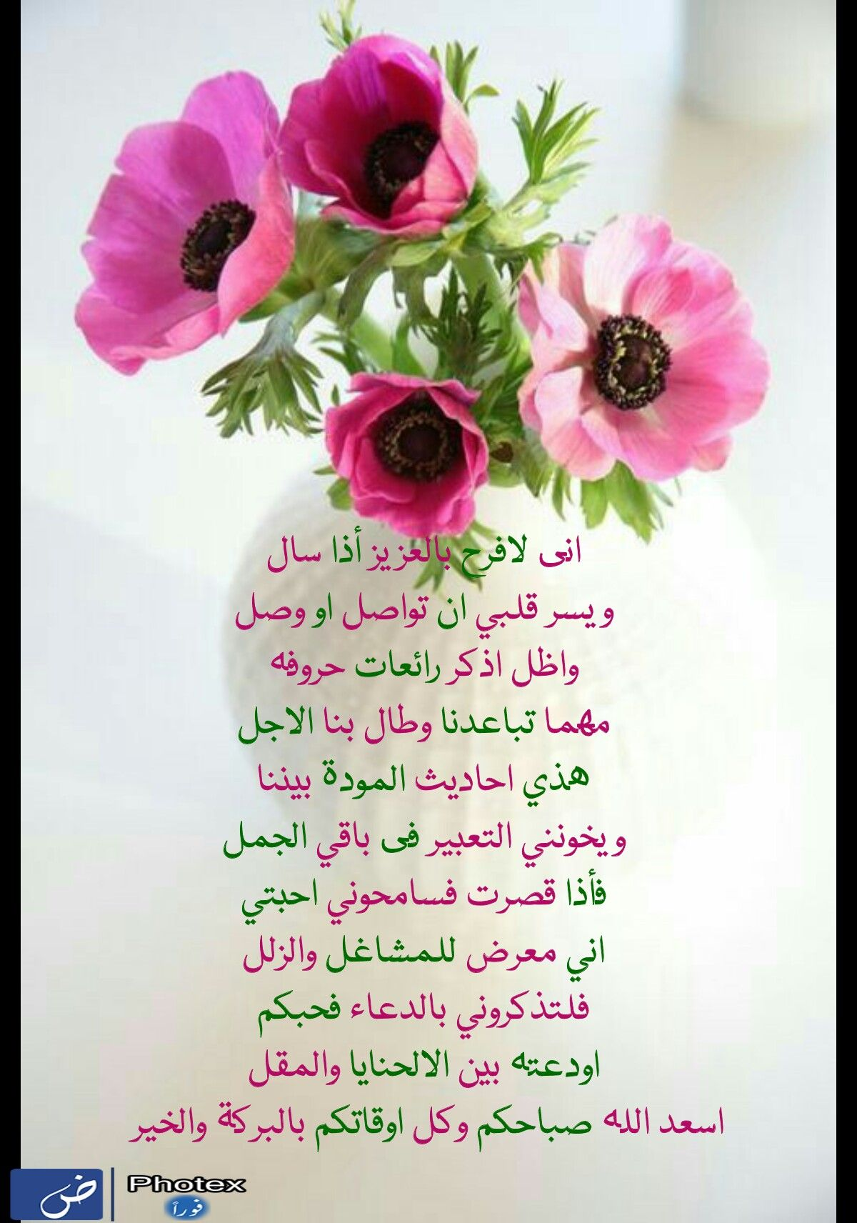 Pin By Hanan Allam On Hanan Morning Images Morning Morning Beautiful Morning