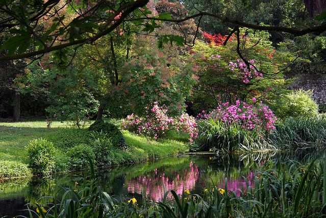 Pin On Green Gardens