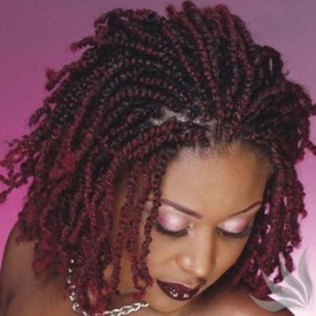 Nubian Twist Hair Twist Hairstyles Twist Braid