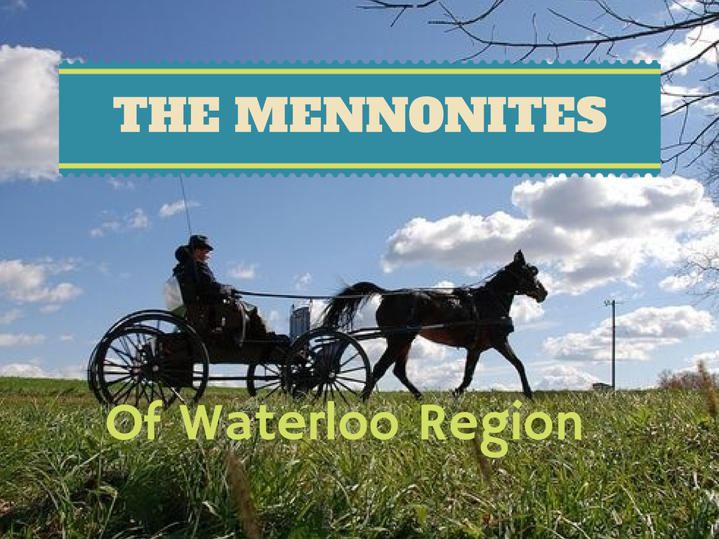 Old Order Mennonites are often spotted around the neighbourhoods in ...
