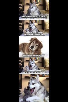 Meme Watch: Pun Dog Isn't Fat, He's Just A Little Husky
