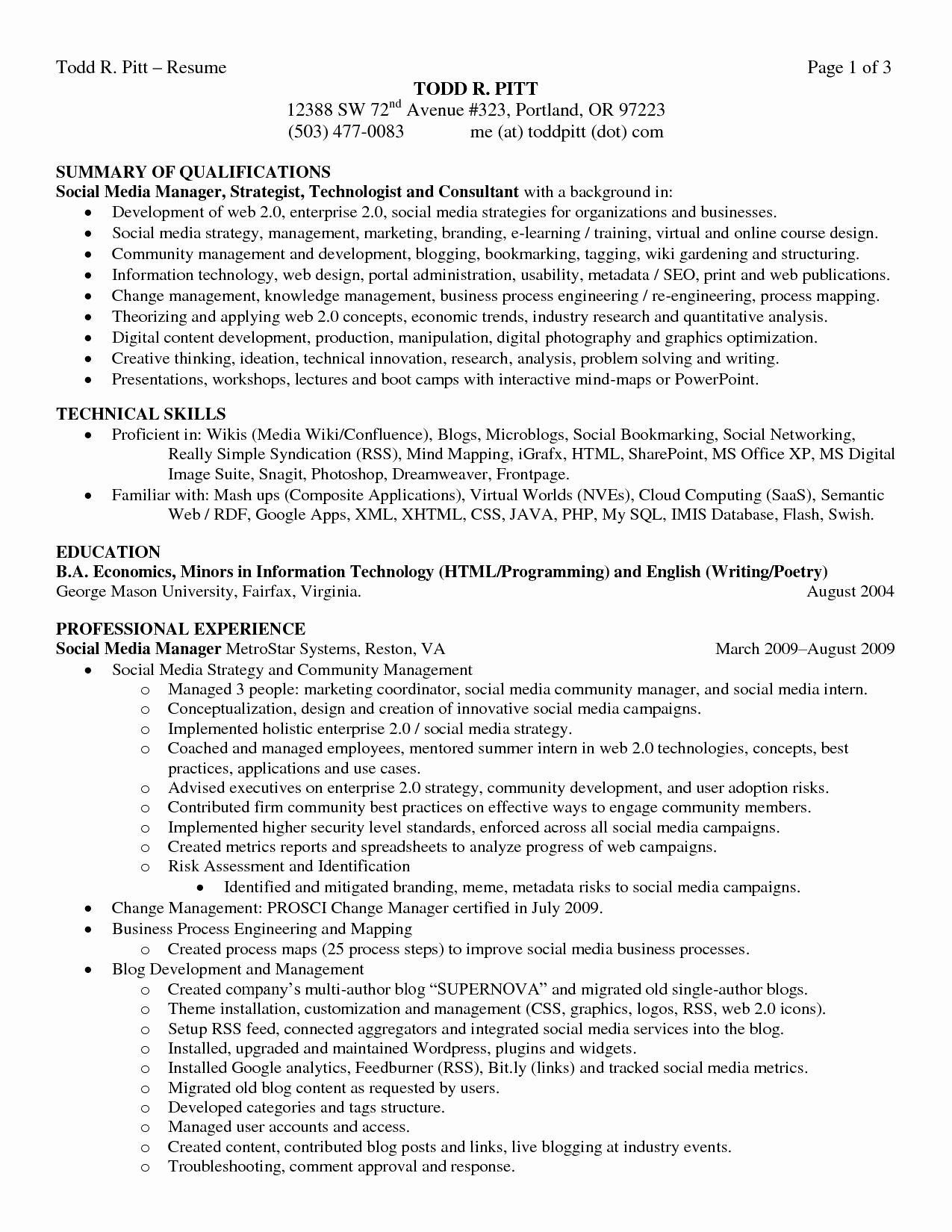 Example Resume Summary Statements Unique Best Summary Of