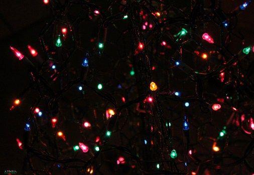 Save 30% off beautiful Crab Pot Christmas Trees!! - WEMAKE7