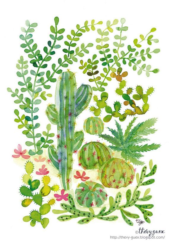 Illustration poster affiche tableau peinture aquarelle for Plantes decoration jardin