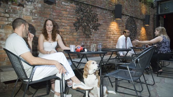 The best dog-friendly restaurants in NYC | Unique NYC | Dog friends