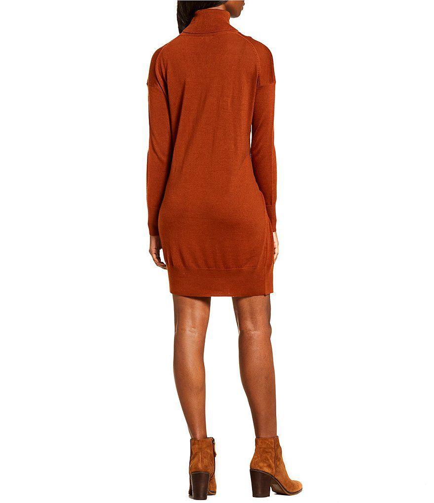 6bbb9d8162 Cremieux Izzy Turtleneck Sweater Dress Izzy