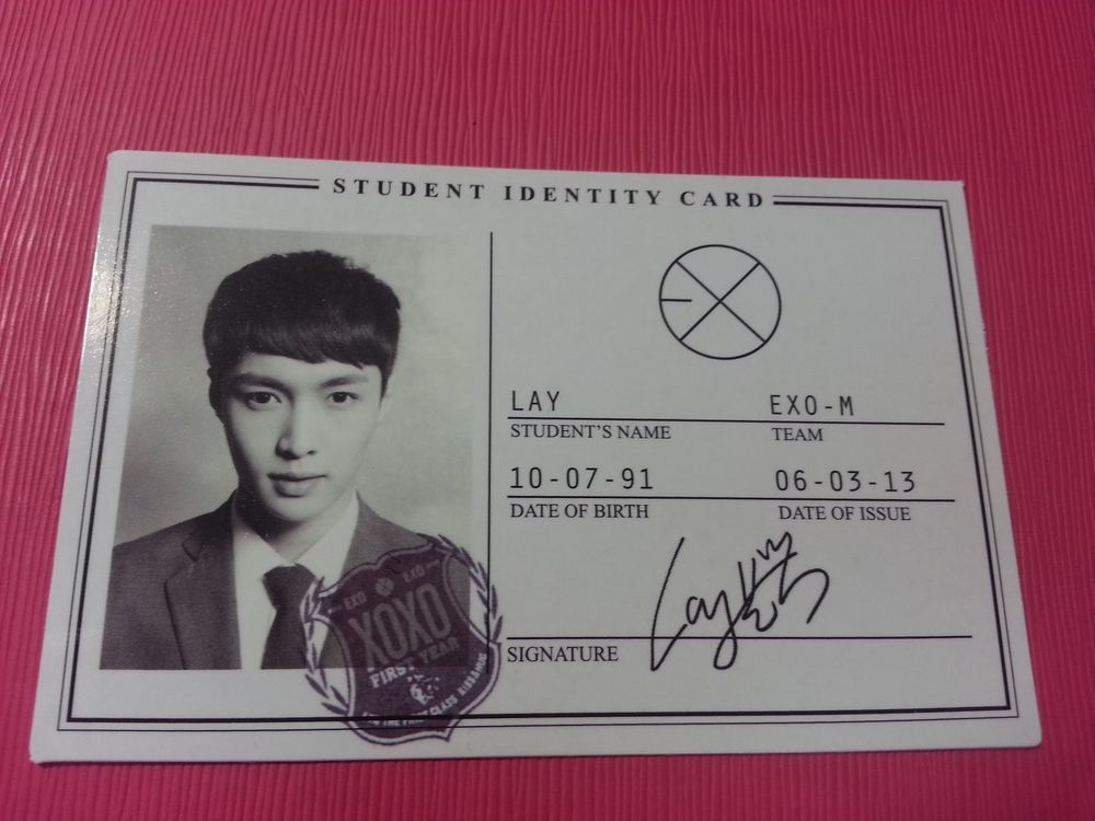 EXO M LAY Photocard 1st Album XOXO Official Photo ID Card