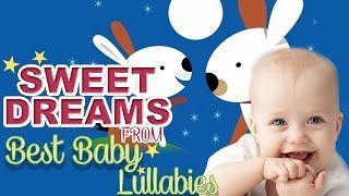 Best Videos & Music For Babies