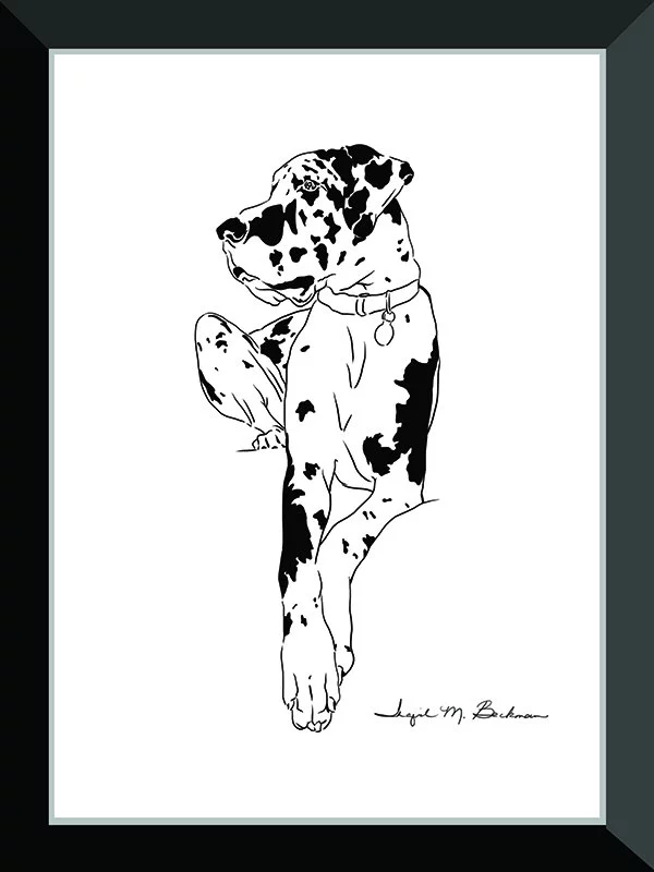 Respect Black And White Line Drawing Of A Melancholy Great Dane Dog Commissioned As A Sticker Illustration By Social Net Dog Drawing Great Dane Dogs Dog Art