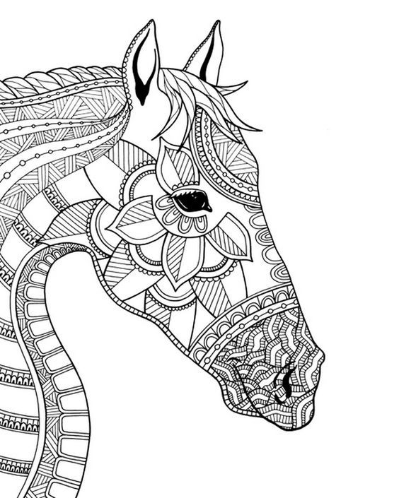 Pin by Stacy Campbell on coloring horses | Coloring canvas ...