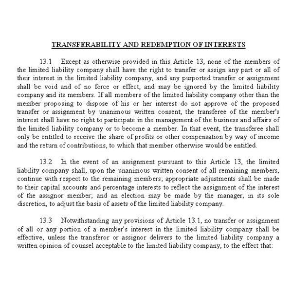 Screenshot Portion of an LLC Operating Agreement Junk Mule - operating agreement