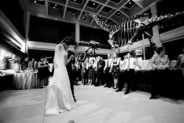 Defined Nature And Humanity Throughout The Ages Houston Museum Of Natural Science Offers Citys Most Unique Venues For Weddings Receptions