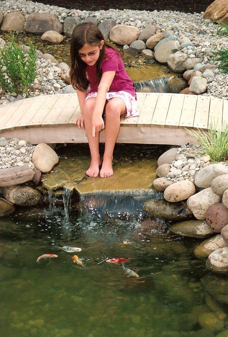 pond bridges for closer view to fish ponds unique garden ideas