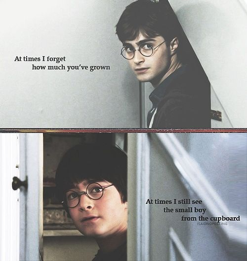 We Have All Memes Potter Harry Changed