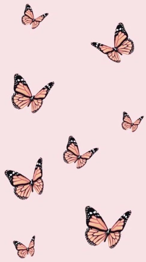 Pin By Erika Garrett The Level Up On Aesthetic Wallpaper In 2020 Simple Iphone Wallpaper Butterfly Wallpaper Iphone Aesthetic Iphone Wallpaper