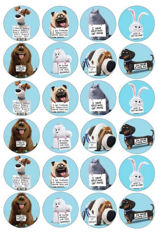 Http Www Ebay Co Uk Itm Secret Life Of Pets Edible Fairy Cup