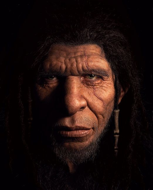 The final face of a Neanderthal man sculpted and designed over a ...