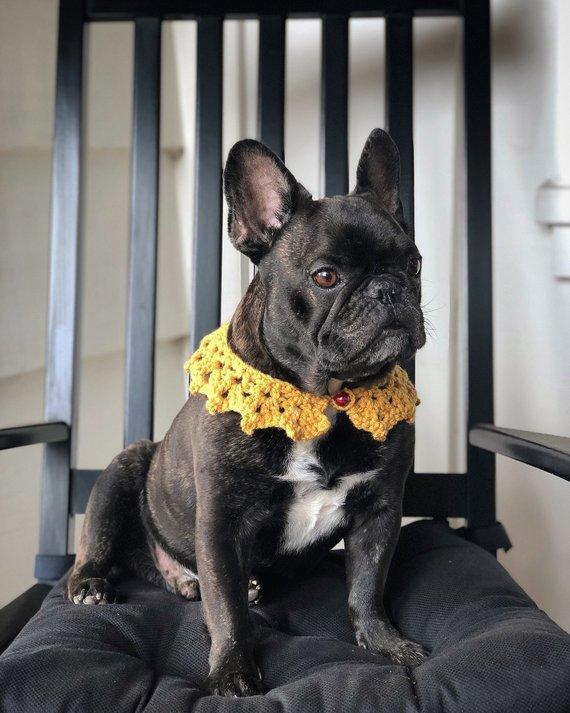 Crocheted Dog Collar Dog Collar Custom Made To Order Dog