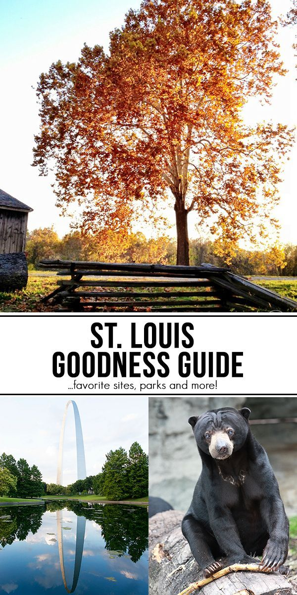 St. Louis Goodness Guide (and Giveaway)