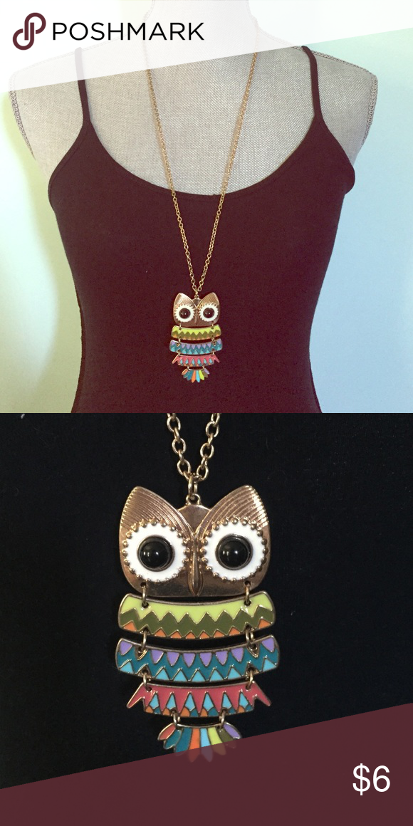 Necklace chain This is a Forever 21 accessory.  This multicolored owl dresses up any plain outfit with a pop of bright colors. Forever 21 Jewelry Necklaces