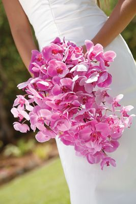 Wild Orchid Wedding Bouquets | Pacific Weddings