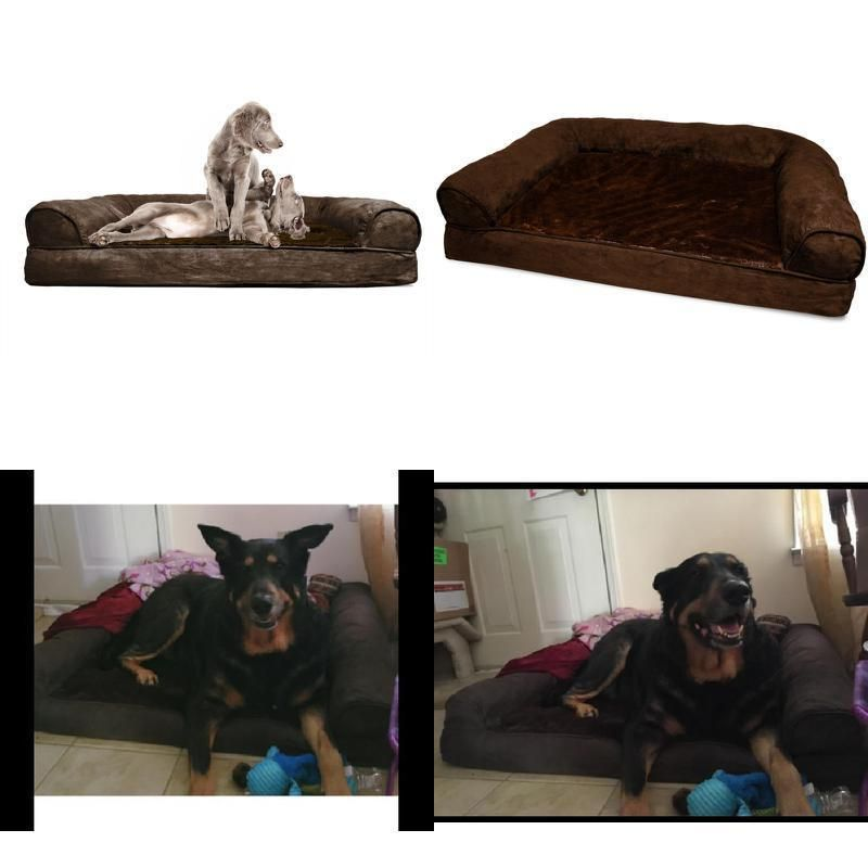 Outstanding Big Dog Bed Sofa Pet Couch English Mas Great Dane Ibusinesslaw Wood Chair Design Ideas Ibusinesslaworg