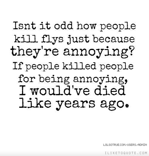 Isn T It Odd How People Kill Flys Just Because They Re Annoying If People Killed People For Being Annoying People Quotes Family Quotes Funny Fun Quotes Funny