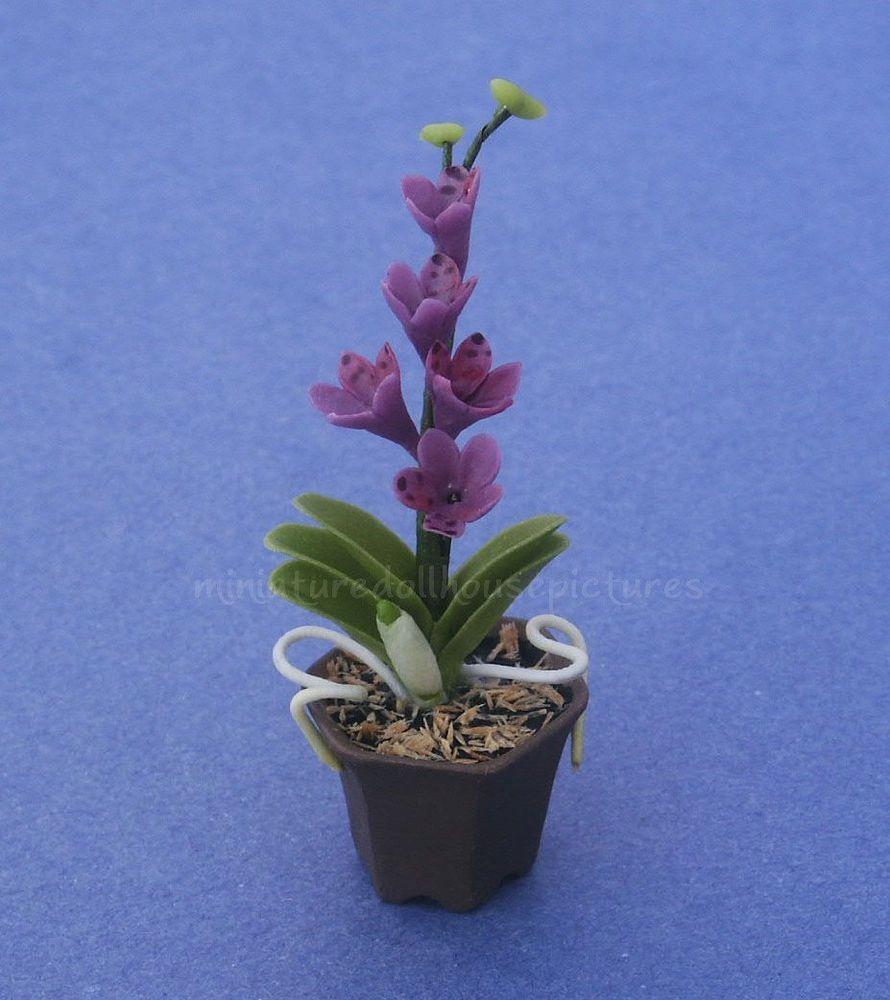 1//12 Dollhouse Miniature Butterfly Orchid Flower Plant Garden Accessory
