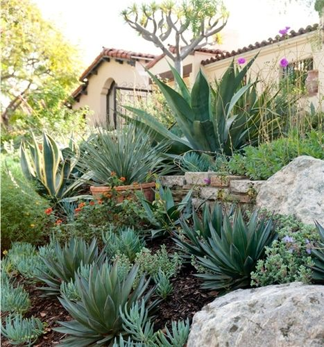 The bold succulents in this Spanish-style garden set off the ... Zone Garden Design Succulents Html on