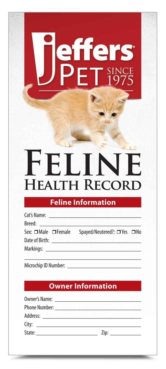Cat Health Records 10 Pk Health Records Feline Health Pet Health
