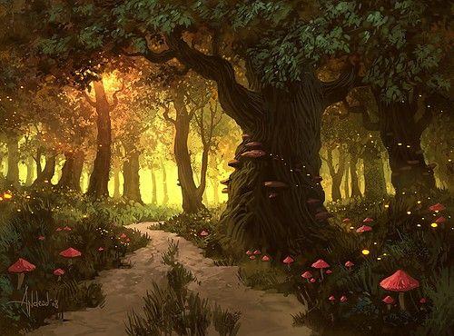 path illustrations   fairytale,forest,illustration,mist,path ...