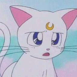 Pinterest Acxdwaves Sailor Moon Quotes Sailor Moon Aesthetic Sailor Moon
