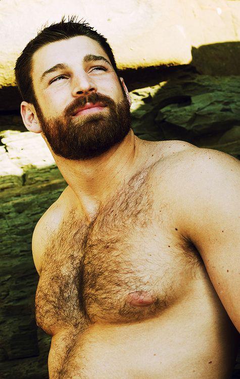 d0762d42d8c45 Hairy Bear Cub. Men. Beards. Fur. Woof! | Men | Hairy men, Men ...