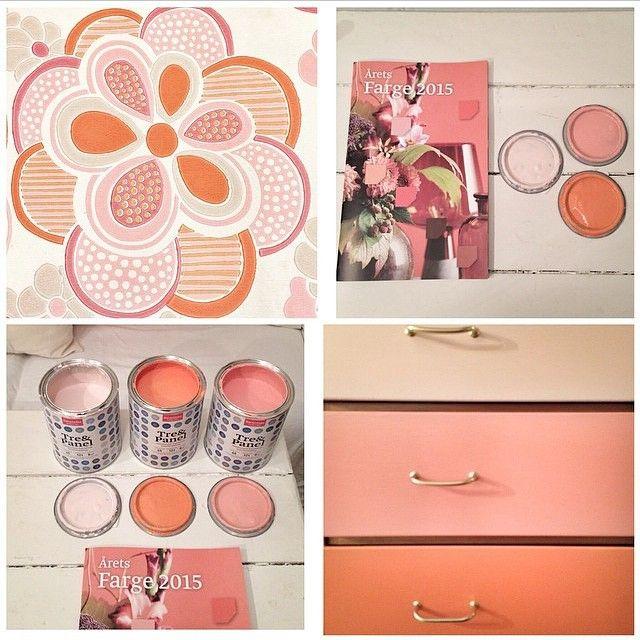 Fargene du ser er Vitamin C FR1404, Tutu FR2521 og Flamingo FR2513!