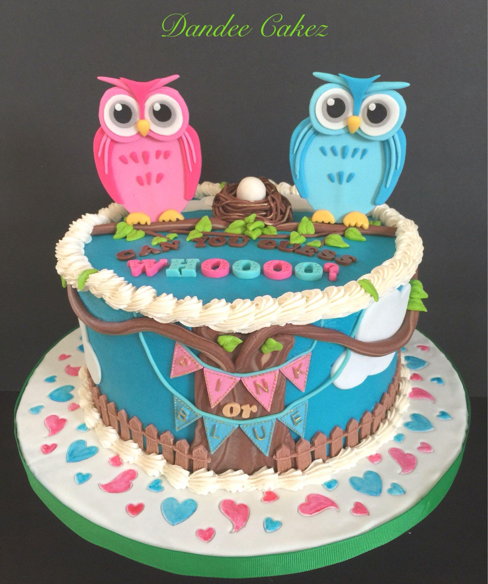Gender Reveal Owl Babyshower Cake