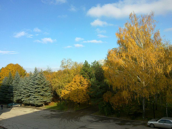 Made this picture from the office window. Autumn in Chisinau