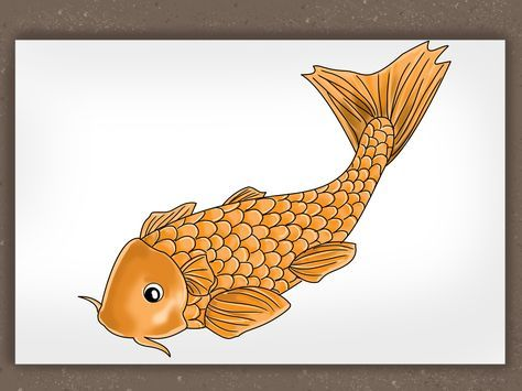 Draw A Koi Fish Friendship A Symbol And Symbols Of Love