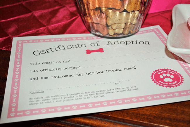 Puppy adoption party featuring FREE printables Adoption party - fresh cat birth certificate free printable