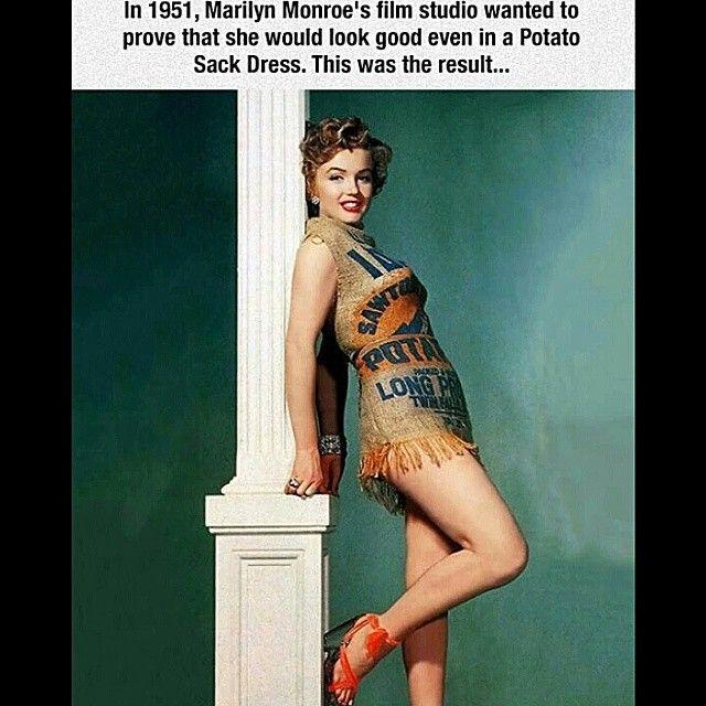 Vintage Memes Image Memes At Relatably Com Marilyn Monroe Photos Marilyn Monroe Marilyn