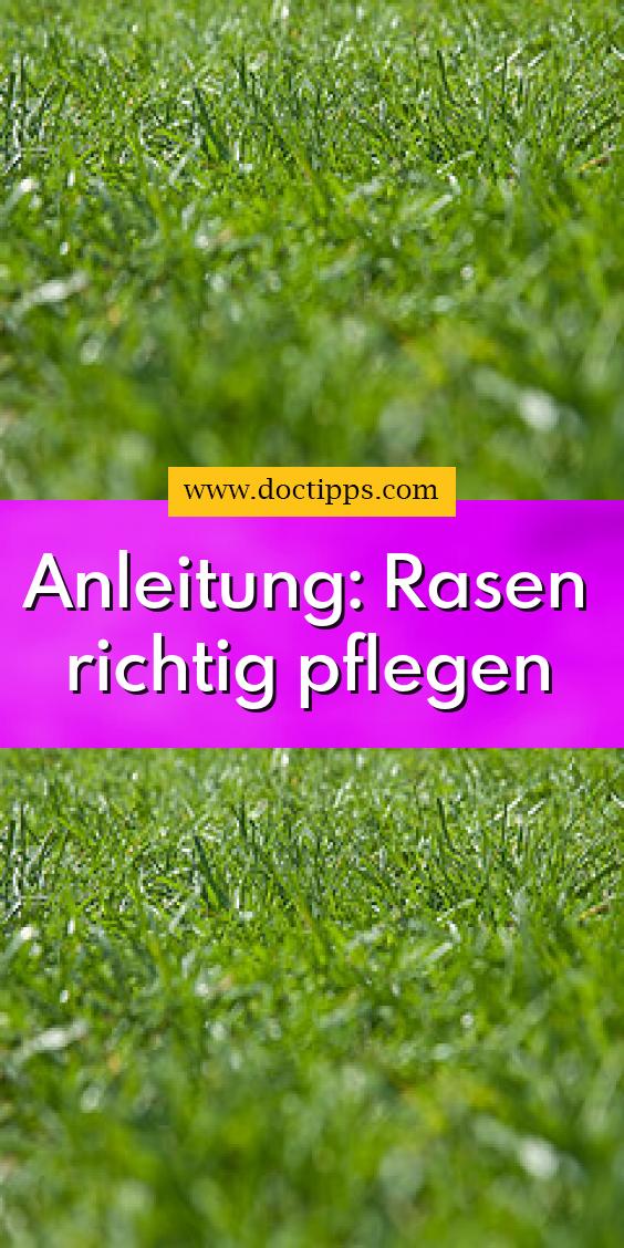 Anleitung Rasen Richtig Pflegen Rasen Anleitungen Rasenpflege