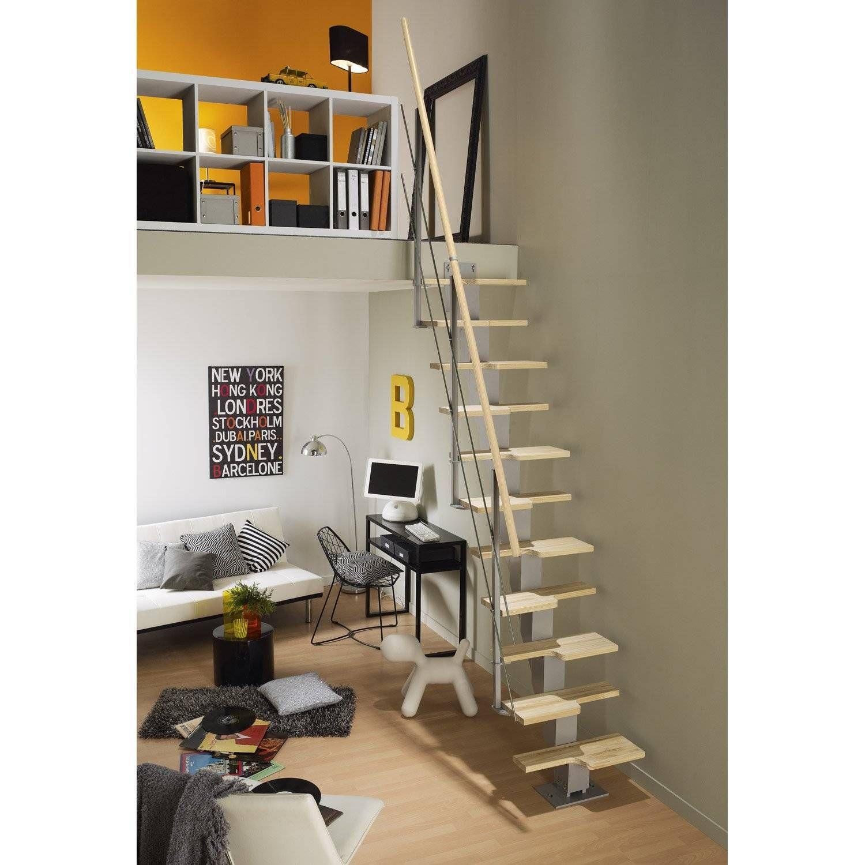 Escalier Exterieur En Kit Leroy Merlin Kit Rambarde Escadeca Obapi En Pin Brut Idees Escalier Escalier Pour Petit Espace Escalier