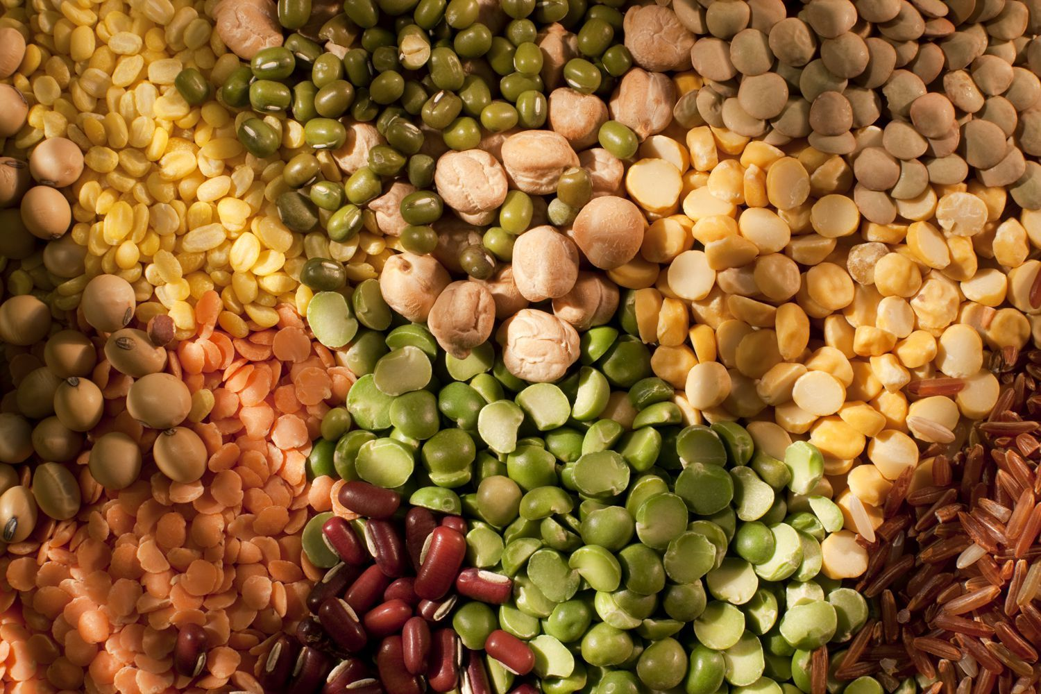 Why Beans And Legumes Are Great For A Low Carb Diet No Carb Diets Vegetable Kabobs Healthy Vegetables